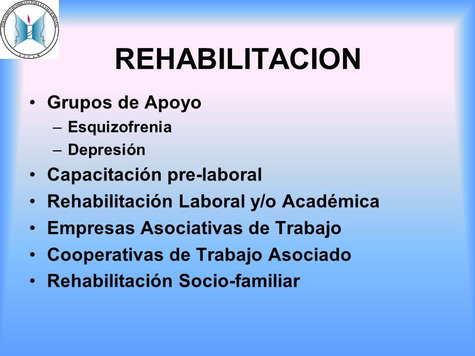 REHABILITACION Grupos de Apoyo –Esquizofrenia –Depresión Capacitación pre-laboral Rehabilitación Laboral y/o Académica Empresas Asociativas de Trabajo