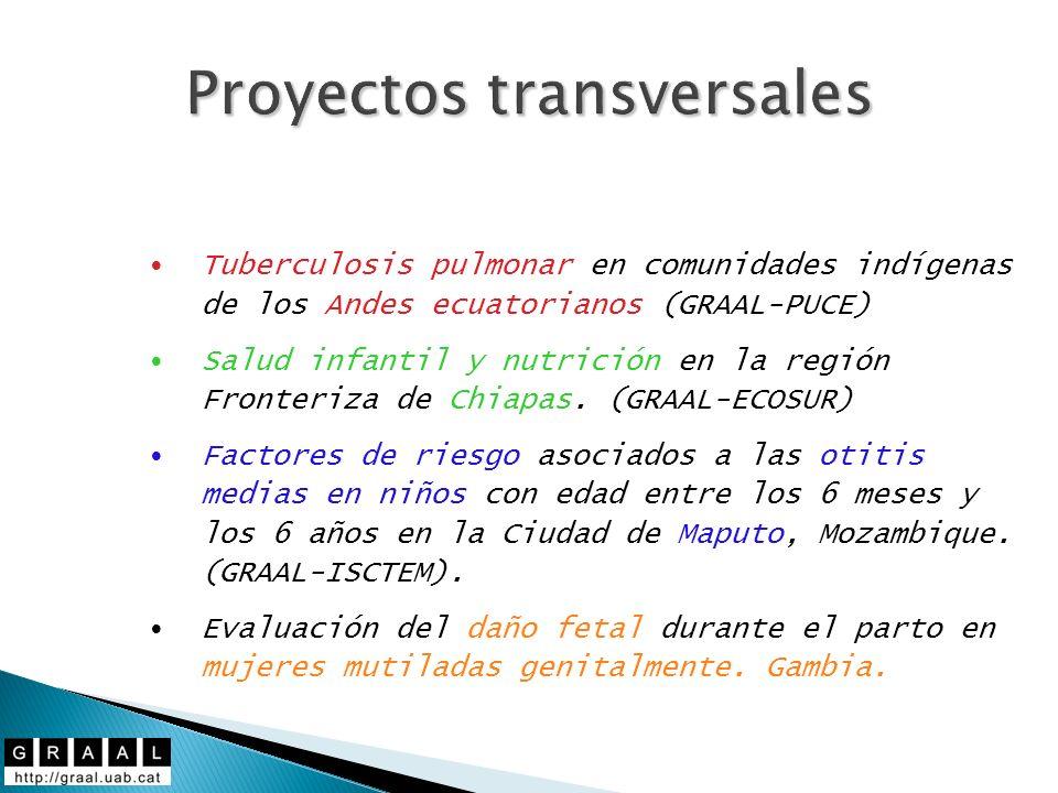 Proyectos transversales Tuberculosis pulmonar en comunidades indígenas de los Andes ecuatorianos (GRAAL-PUCE) Salud infantil y nutrición en la región Fronteriza de Chiapas.