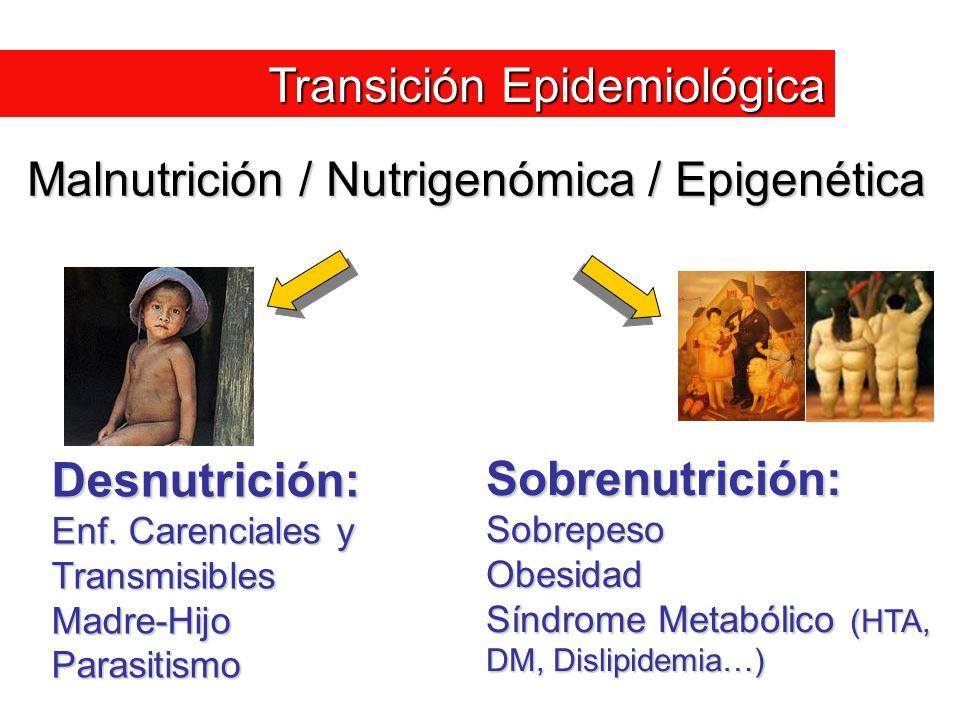 Desnutrición: Enf. Carenciales y Transmisibles Madre-HijoParasitismo Sobrenutrición:SobrepesoObesidad Síndrome Metabólico (HTA, DM, Dislipidemia…) Mal