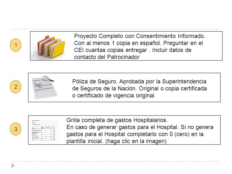 Proyecto Completo con Consentimiento Informado. Con al menos 1 copia en español.