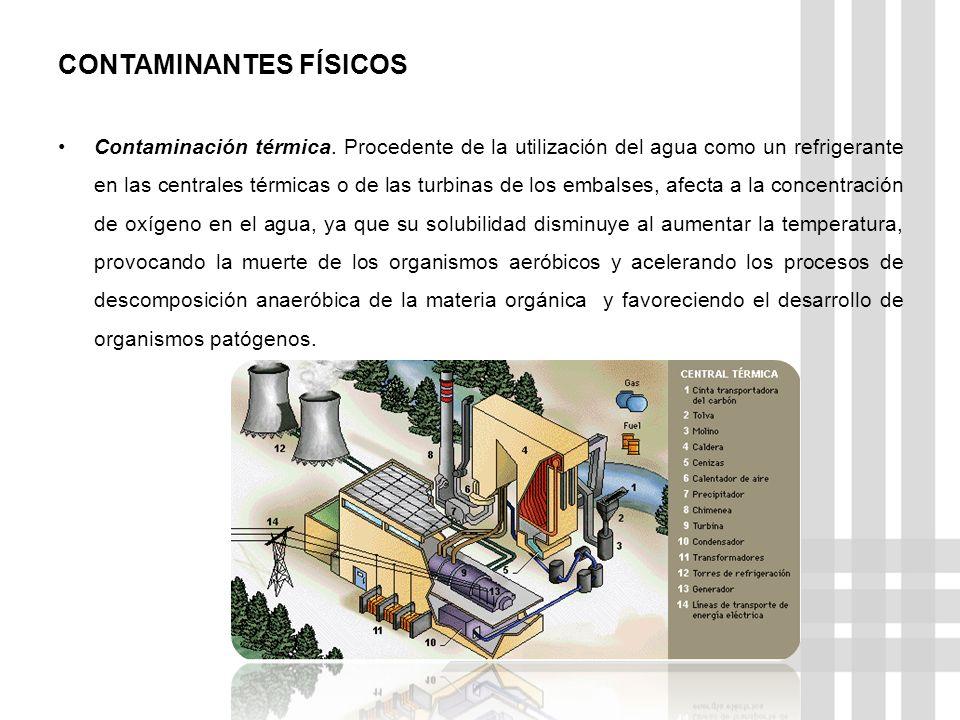 CONTAMINANTES FÍSICOS Contaminación térmica.