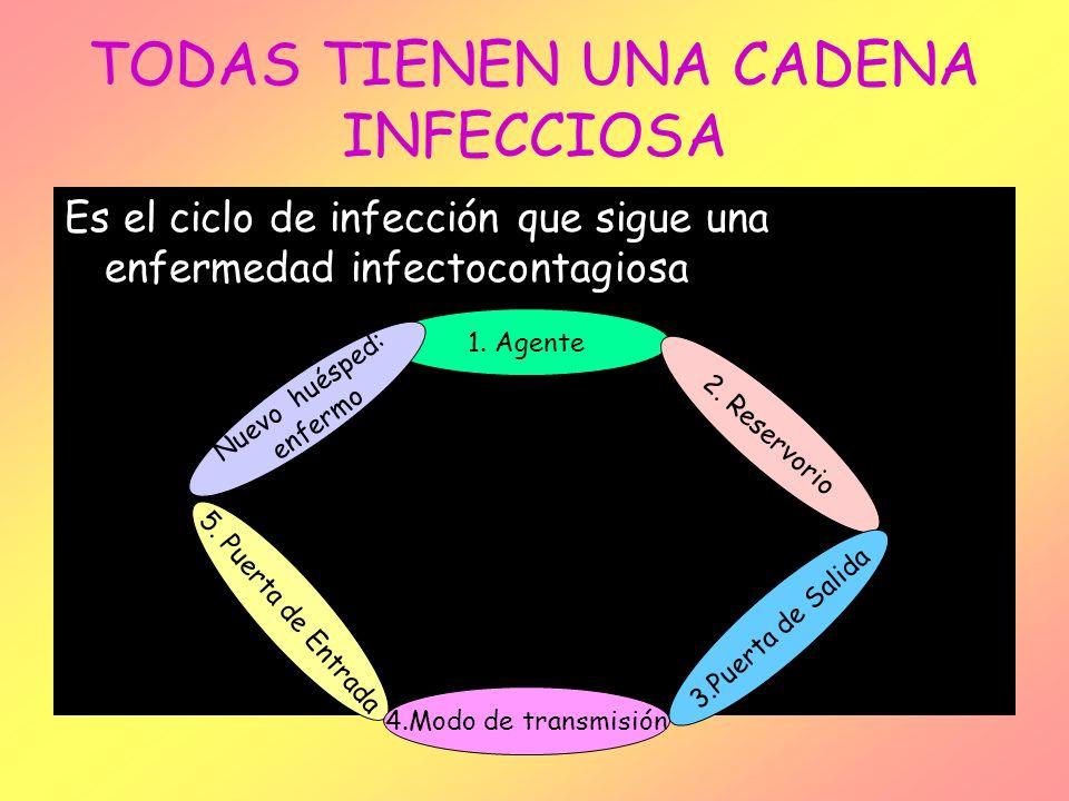 TODAS TIENEN UNA CADENA INFECCIOSA Es el ciclo de infección que sigue una enfermedad infectocontagiosa 1. Agente Nuevo huésped: enfermo 2. Reservorio