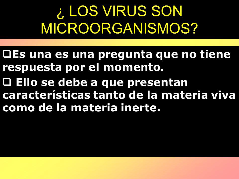 ¿ LOS VIRUS SON MICROORGANISMOS? Es una es una pregunta que no tiene respuesta por el momento. Ello se debe a que presentan características tanto de l