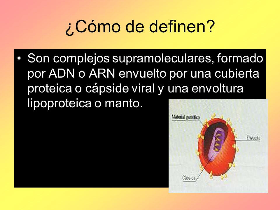 ¿Cómo de definen? Son complejos supramoleculares, formado por ADN o ARN envuelto por una cubierta proteica o cápside viral y una envoltura lipoproteic