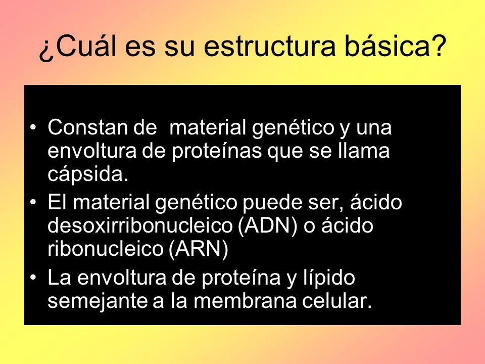 ¿Cuál es su estructura básica? Constan de material genético y una envoltura de proteínas que se llama cápsida. El material genético puede ser, ácido d