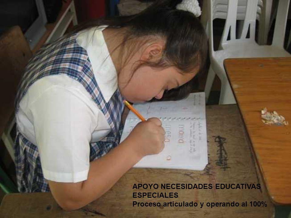 APOYO NECESIDADES EDUCATIVAS ESPECIALES Proceso articulado y operando al 100%