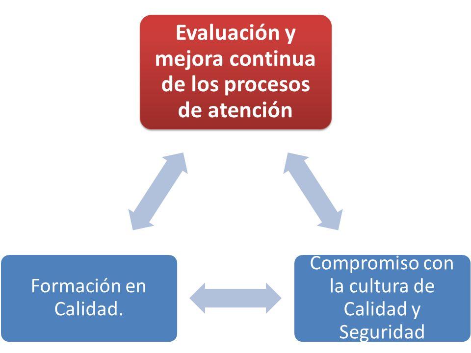 Evaluación y mejora continua de los procesos de atención Compromiso con la cultura de Calidad y Seguridad Formación en Calidad.