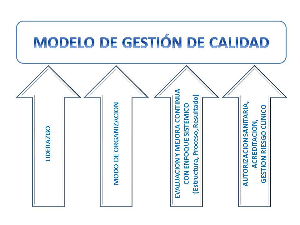 LIDERAZGO MODO DE ORGANIZACION EVALUACION Y MEJORA CONTINUA CON ENFOQUE SISTEMICO (Estructura, Proceso, Resultado) AUTORIZACION SANITARIA, ACREDITACIO