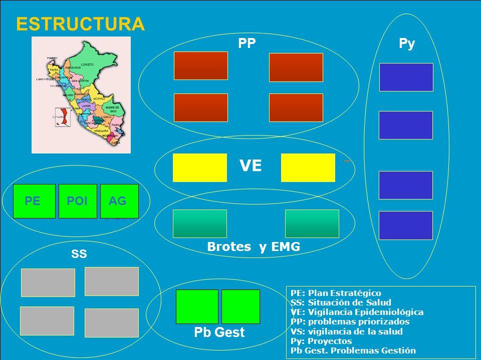 ESTRUCTURA Py PP VE Brotes y EMG PE: Plan Estratégico SS: Situación de Salud VE: Vigilancia Epidemiológica PP: problemas priorizados VS: vigilancia de