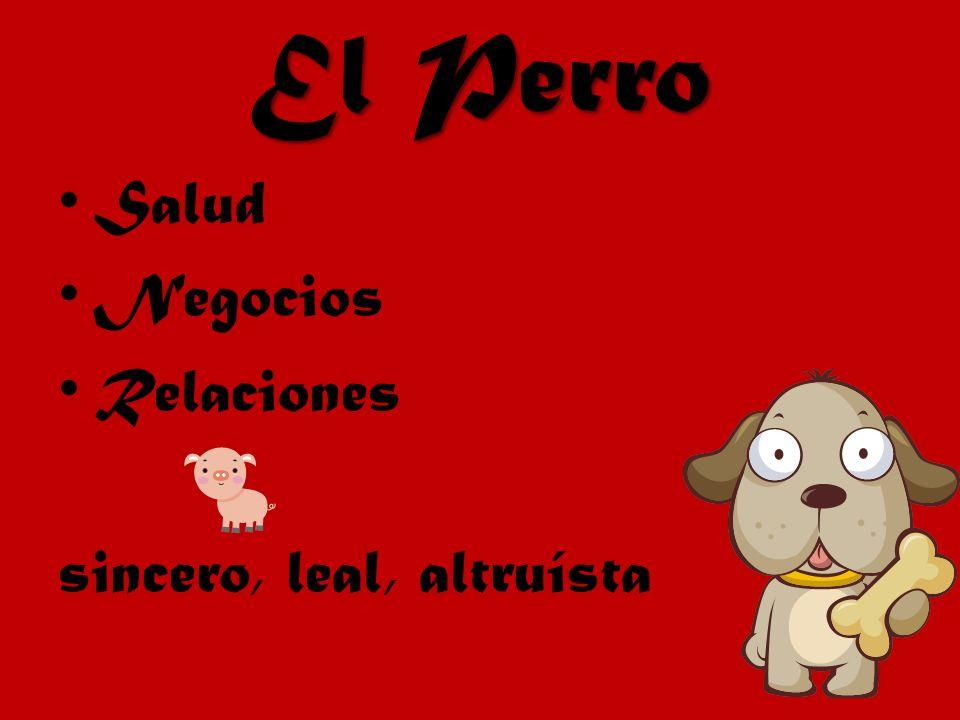 El Perro Salud Negocios Relaciones sincero, leal, altruísta