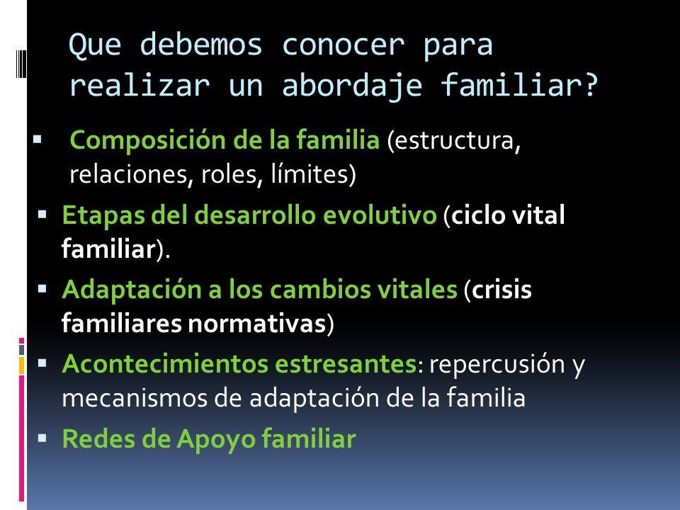 Que debemos conocer para realizar un abordaje familiar? Composición de la familia (estructura, relaciones, roles, límites) Etapas del desarrollo evolu