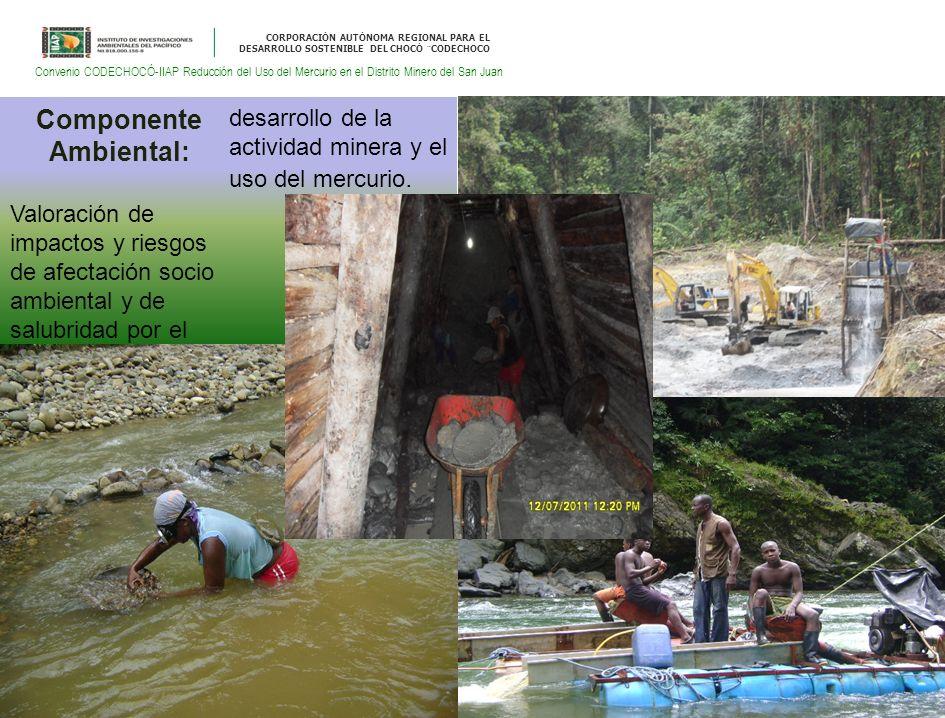 CORPORACIÓN AUTÓNOMA REGIONAL PARA EL DESARROLLO SOSTENIBLE DEL CHOCÓ ¨CODECHOCO Convenio CODECHOCÓ-IIAP Reducción del Uso del Mercurio en el Distrito Minero del San Juan Componente Ambiental: Valoración de impactos y riesgos de afectación socio ambiental y de salubridad por el desarrollo de la actividad minera y el uso del mercurio.