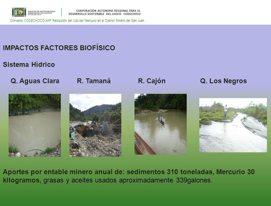CORPORACIÓN AUTÓNOMA REGIONAL PARA EL DESARROLLO SOSTENIBLE DEL CHOCÓ ¨CODECHOCO Convenio CODECHOCÓ-IIAP Reducción del Uso del Mercurio en el Distrito Minero del San Juan IMPACTOS FACTORES BIOFÍSICO Sistema Hídrico Q.
