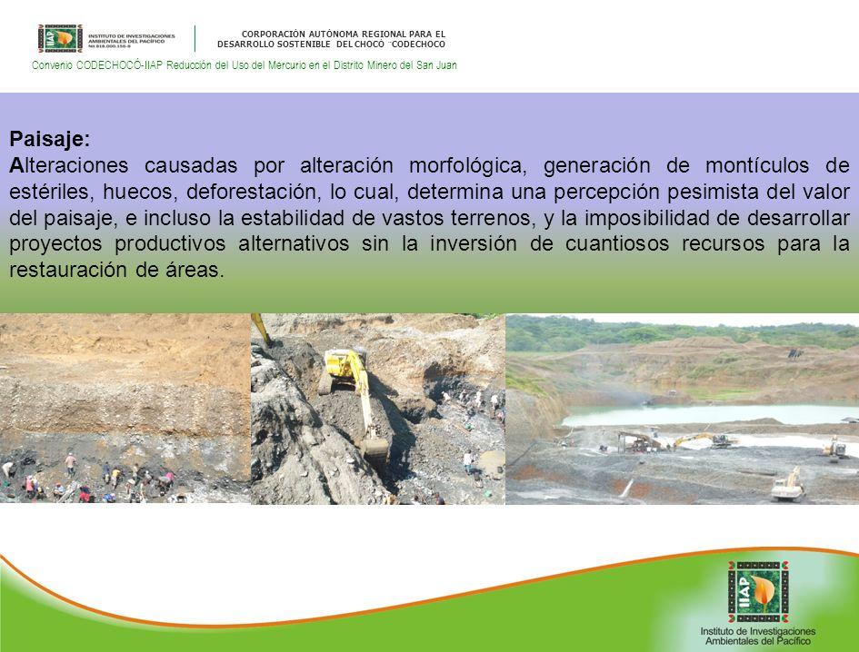 CORPORACIÓN AUTÓNOMA REGIONAL PARA EL DESARROLLO SOSTENIBLE DEL CHOCÓ ¨CODECHOCO Convenio CODECHOCÓ-IIAP Reducción del Uso del Mercurio en el Distrito Minero del San Juan Paisaje: Alteraciones causadas por alteración morfológica, generación de montículos de estériles, huecos, deforestación, lo cual, determina una percepción pesimista del valor del paisaje, e incluso la estabilidad de vastos terrenos, y la imposibilidad de desarrollar proyectos productivos alternativos sin la inversión de cuantiosos recursos para la restauración de áreas.