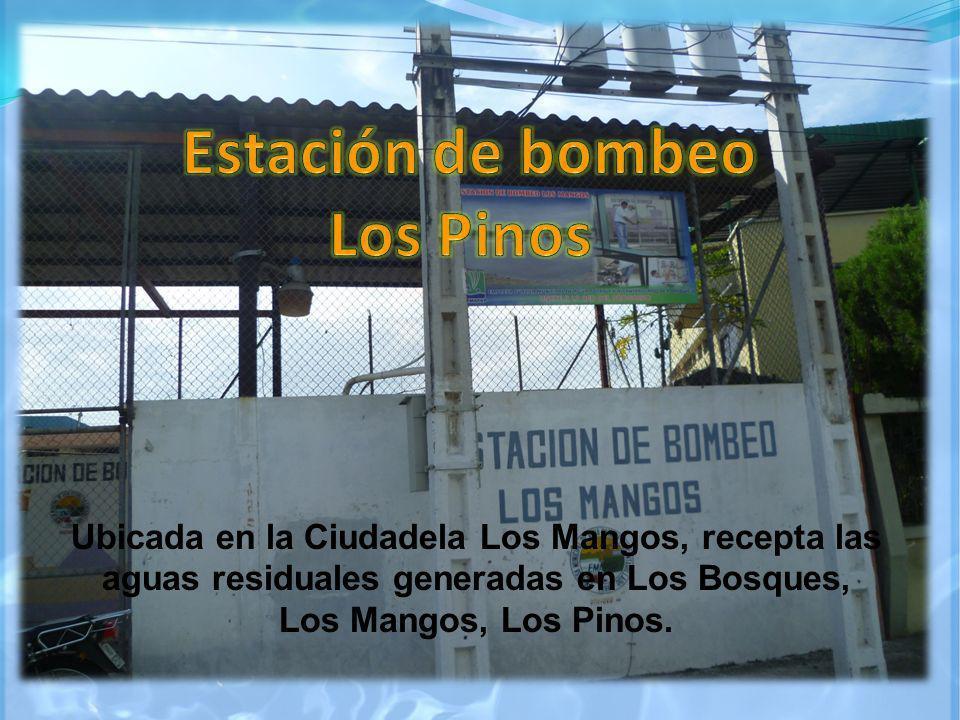Ubicada en la Ciudadela Los Mangos, recepta las aguas residuales generadas en Los Bosques, Los Mangos, Los Pinos.