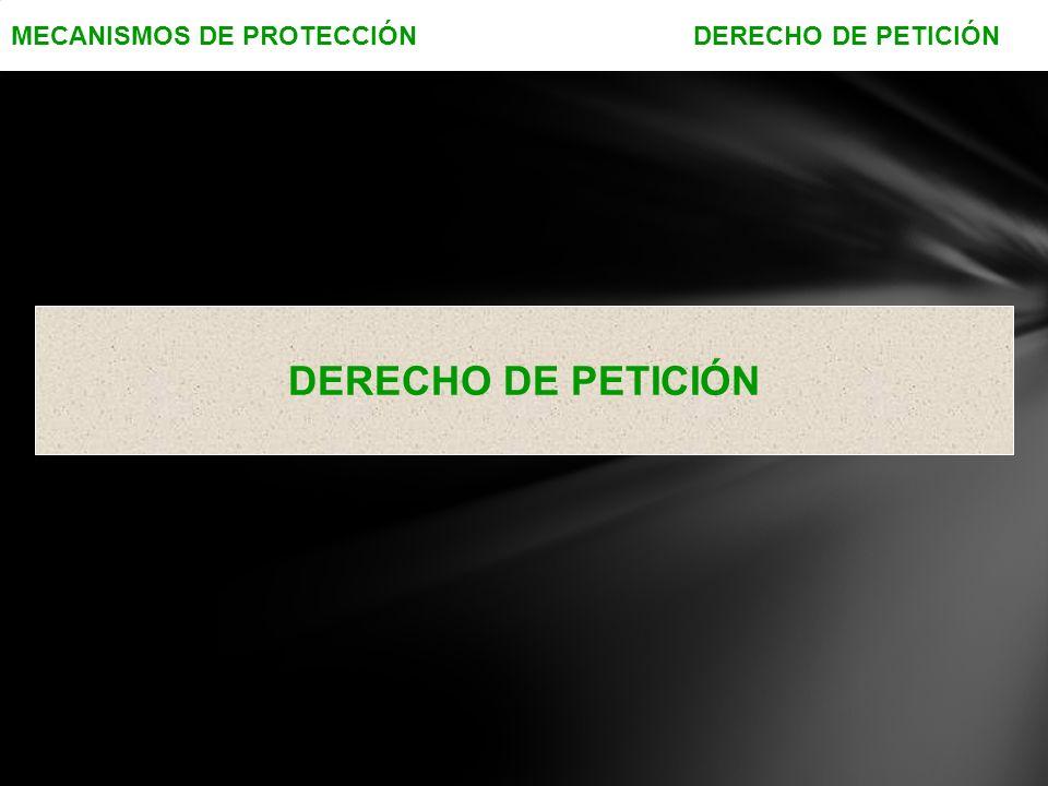 DERECHO DE PETICIÓN MECANISMOS DE PROTECCIÓN DERECHO DE PETICIÓN