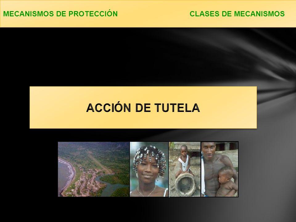 MECANISMOS DE PROTECCIÓN CLASES DE MECANISMOS
