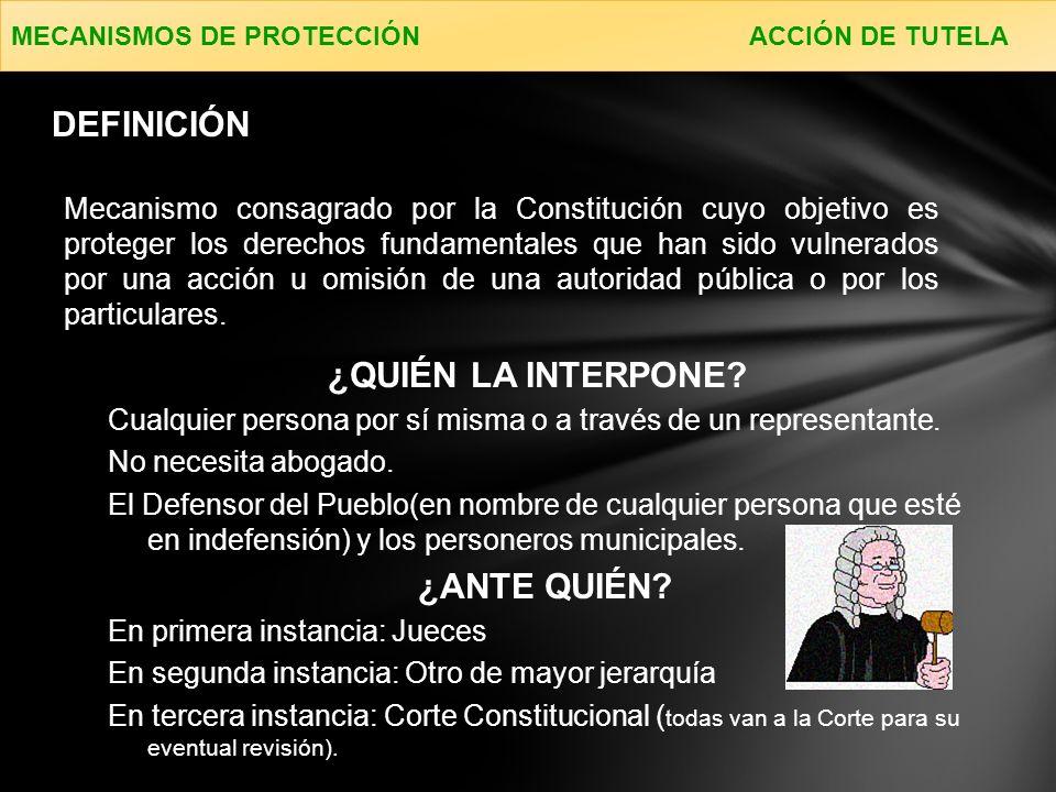 Son los medios procesales para la protección de los derechos e intereses colectivos.