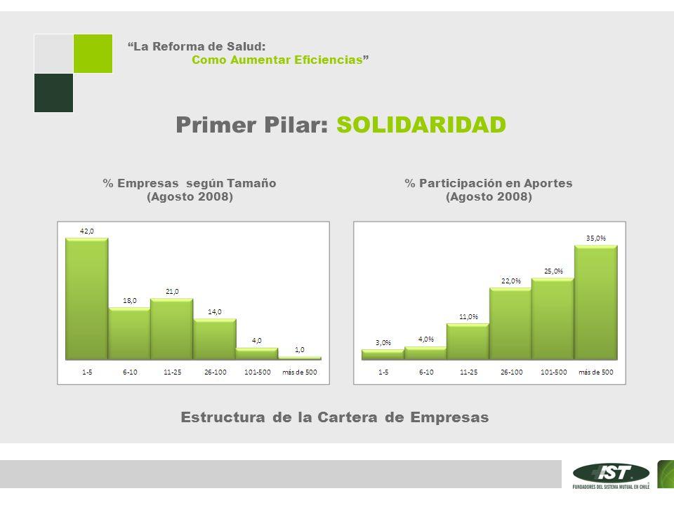 La Reforma de Salud: Como Aumentar Eficiencias Primer Pilar: SOLIDARIDAD % Empresas según Tamaño (Agosto 2008) % Participación en Aportes (Agosto 2008) Estructura de la Cartera de Empresas