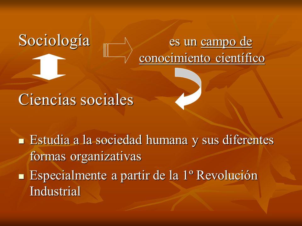 Sociología es un campo de conocimiento científico Ciencias sociales Estudia a la sociedad humana y sus diferentes formas organizativas Estudia a la so