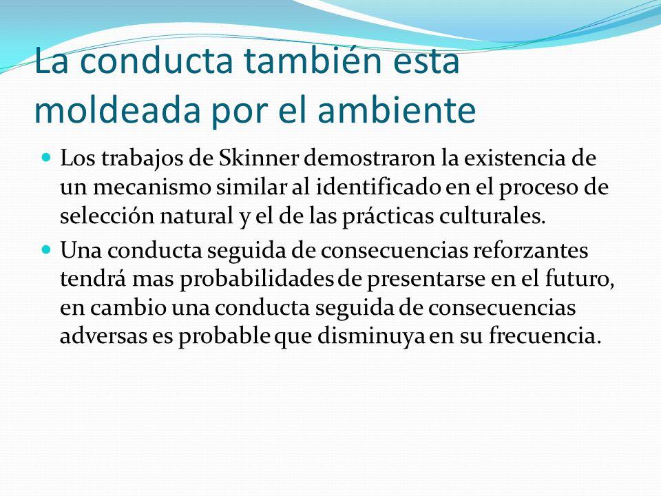 La conducta también esta moldeada por el ambiente Los trabajos de Skinner demostraron la existencia de un mecanismo similar al identificado en el proc