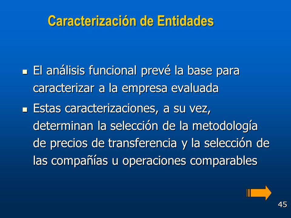 45 Caracterización de Entidades El análisis funcional prevé la base para caracterizar a la empresa evaluada El análisis funcional prevé la base para c