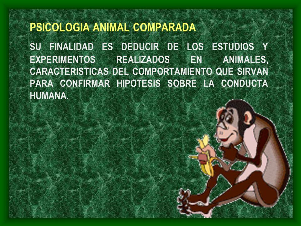 PSICOLOGIA ANIMAL COMPARADA SU FINALIDAD ES DEDUCIR DE LOS ESTUDIOS Y EXPERIMENTOS REALIZADOS EN ANIMALES, CARACTERISTICAS DEL COMPORTAMIENTO QUE SIRV