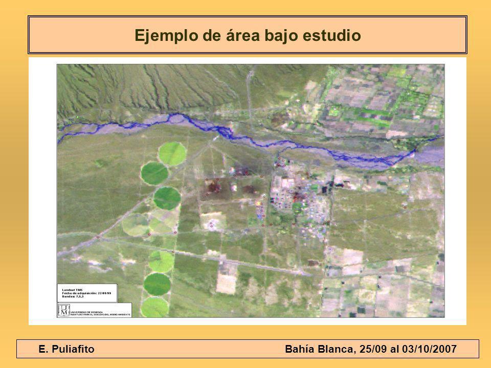 E. Puliafito Bahía Blanca, 25/09 al 03/10/2007 Ejemplo de área bajo estudio