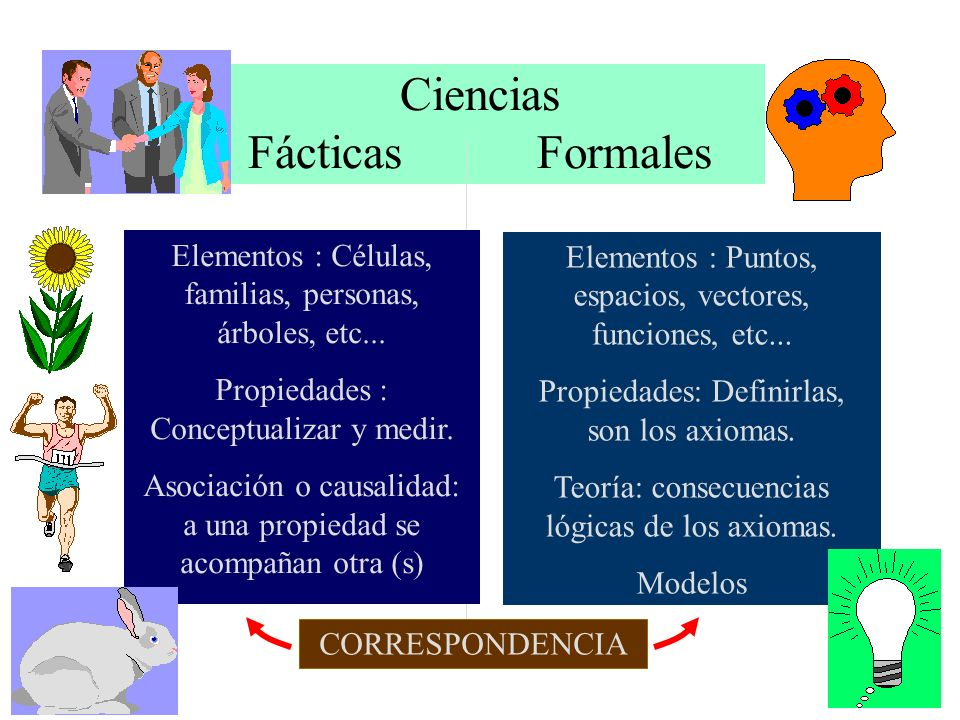 Ciencias Fácticas Formales Elementos : Células, familias, personas, árboles, etc... Propiedades : Conceptualizar y medir. Asociación o causalidad: a u
