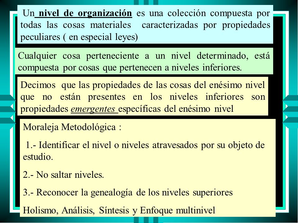 Un nivel de organización es una colección compuesta por todas las cosas materiales caracterizadas por propiedades peculiares ( en especial leyes) Deci