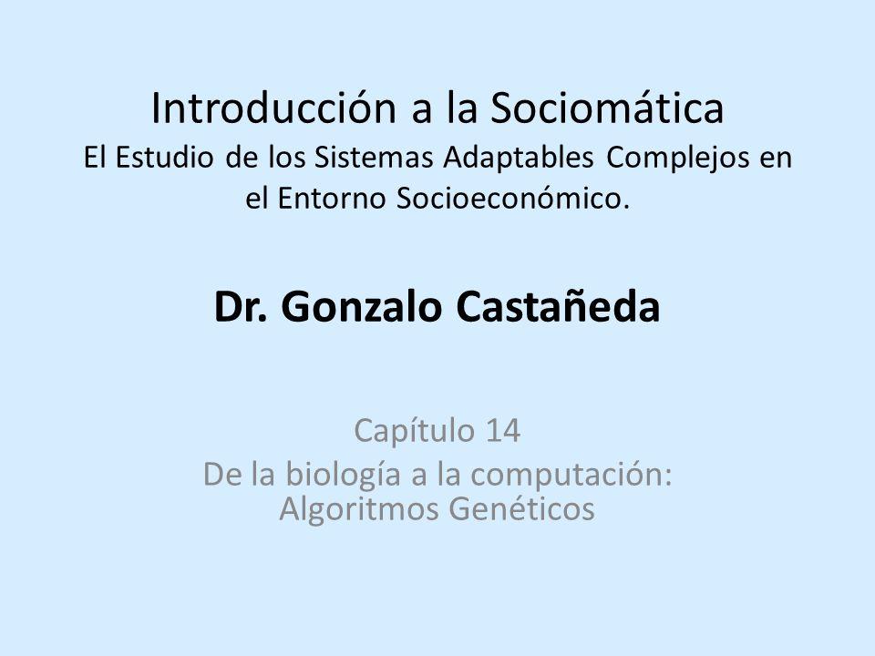 Introducción a la Sociomática El Estudio de los Sistemas Adaptables Complejos en el Entorno Socioeconómico.