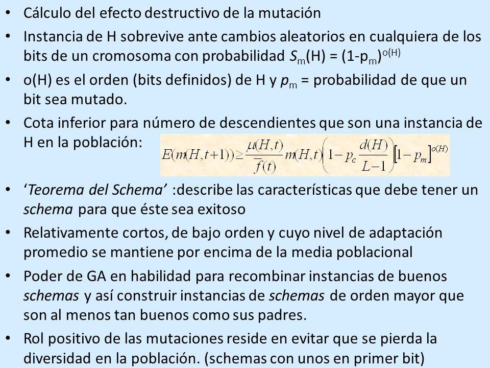 Cálculo del efecto destructivo de la mutación Instancia de H sobrevive ante cambios aleatorios en cualquiera de los bits de un cromosoma con probabilidad S m (H) = (1-p m ) o(H) o(H) es el orden (bits definidos) de H y p m = probabilidad de que un bit sea mutado.