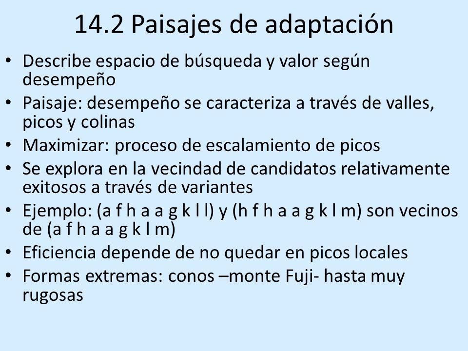 14.2 Paisajes de adaptación Describe espacio de búsqueda y valor según desempeño Paisaje: desempeño se caracteriza a través de valles, picos y colinas Maximizar: proceso de escalamiento de picos Se explora en la vecindad de candidatos relativamente exitosos a través de variantes Ejemplo: (a f h a a g k l l) y (h f h a a g k l m) son vecinos de (a f h a a g k l m) Eficiencia depende de no quedar en picos locales Formas extremas: conos –monte Fuji- hasta muy rugosas