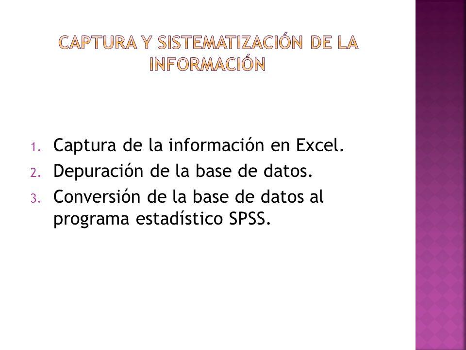 1. Captura de la información en Excel. 2. Depuración de la base de datos. 3. Conversión de la base de datos al programa estadístico SPSS.