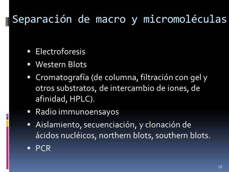 Separación de macro y micromoléculas Electroforesis Western Blots Cromatografía (de columna, filtración con gel y otros substratos, de intercambio de iones, de afinidad, HPLC).