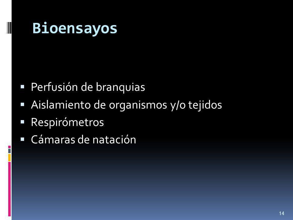 Bioensayos Perfusión de branquias Aislamiento de organismos y/o tejidos Respirómetros Cámaras de natación 14