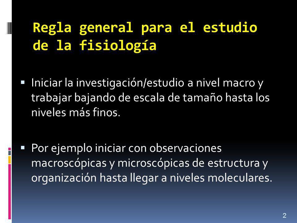 Regla general para el estudio de la fisiología Iniciar la investigación/estudio a nivel macro y trabajar bajando de escala de tamaño hasta los niveles