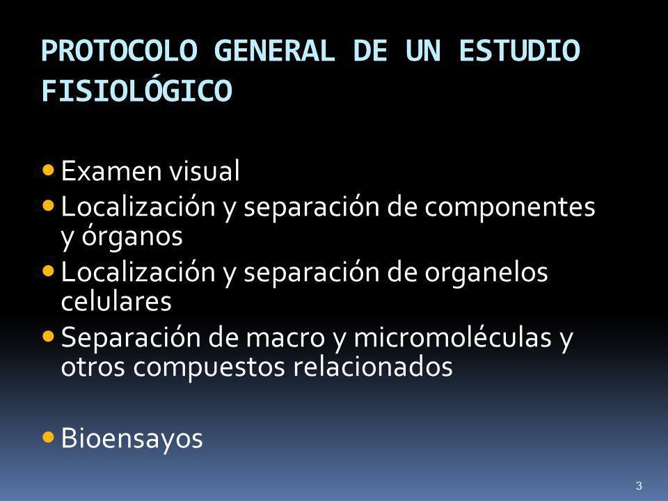 PROTOCOLO GENERAL DE UN ESTUDIO FISIOLÓGICO Examen visual Localización y separación de componentes y órganos Localización y separación de organelos celulares Separación de macro y micromoléculas y otros compuestos relacionados Bioensayos 3
