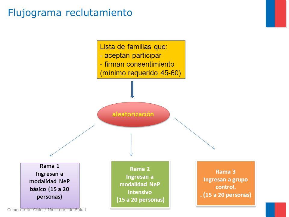 Gobierno de Chile / Ministerio de Salud Flujograma reclutamiento Lista de familias que: - aceptan participar - firman consentimiento (mínimo requerido