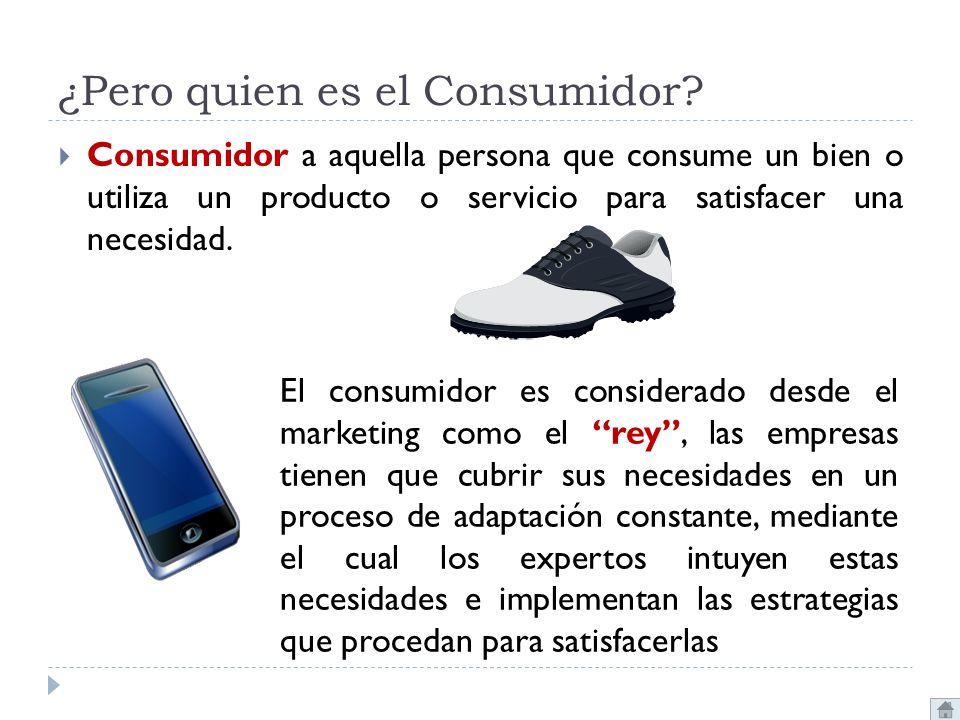 ¿Pero quien es el Consumidor? Consumidor a aquella persona que consume un bien o utiliza un producto o servicio para satisfacer una necesidad. El cons