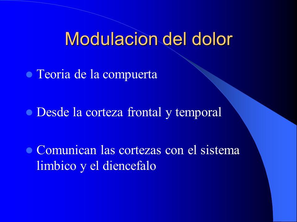 Modulacion del dolor Teoria de la compuerta Desde la corteza frontal y temporal Comunican las cortezas con el sistema limbico y el diencefalo
