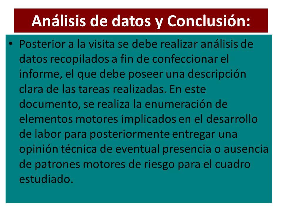 Análisis de datos y Conclusión: Posterior a la visita se debe realizar análisis de datos recopilados a fin de confeccionar el informe, el que debe poseer una descripción clara de las tareas realizadas.