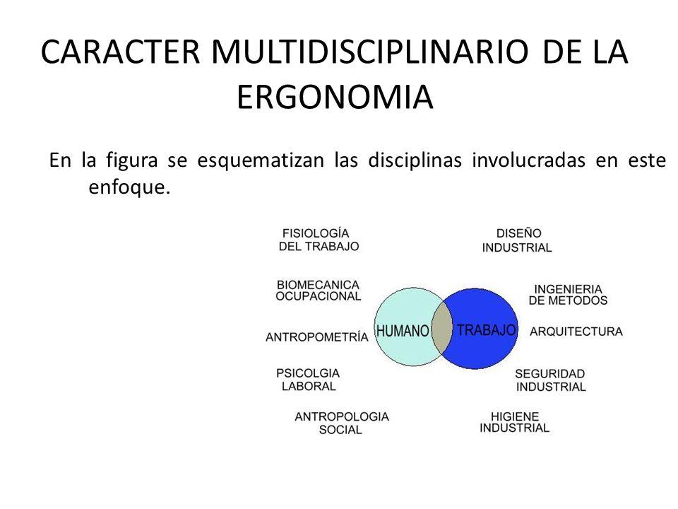 CARACTER MULTIDISCIPLINARIO DE LA ERGONOMIA En la figura se esquematizan las disciplinas involucradas en este enfoque.