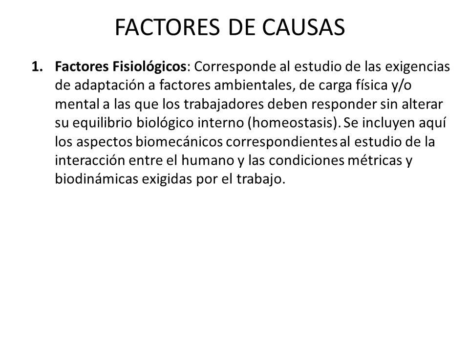 FACTORES DE CAUSAS 1.Factores Fisiológicos: Corresponde al estudio de las exigencias de adaptación a factores ambientales, de carga física y/o mental