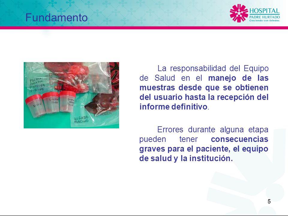 5 La responsabilidad del Equipo de Salud en el manejo de las muestras desde que se obtienen del usuario hasta la recepción del informe definitivo. Fun