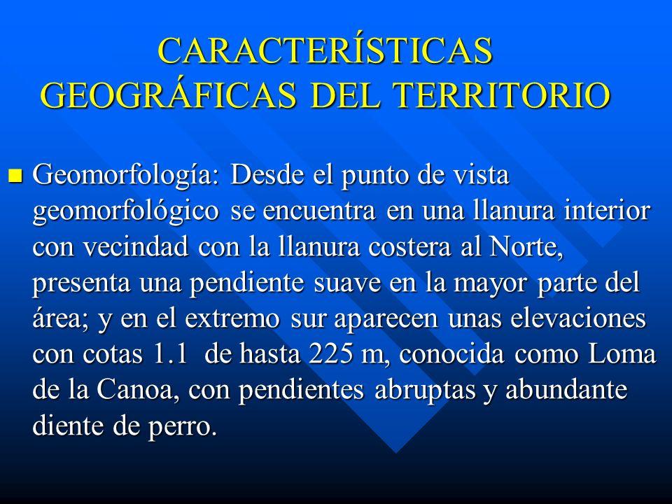 CARACTERÍSTICAS GEOGRÁFICAS DEL TERRITORIO Geomorfología: Desde el punto de vista geomorfológico se encuentra en una llanura interior con vecindad con la llanura costera al Norte, presenta una pendiente suave en la mayor parte del área; y en el extremo sur aparecen unas elevaciones con cotas 1.1 de hasta 225 m, conocida como Loma de la Canoa, con pendientes abruptas y abundante diente de perro.