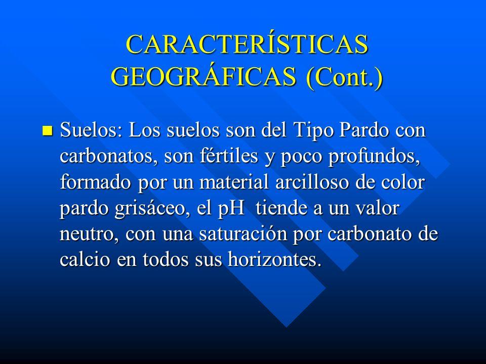 CARACTERÍSTICAS GEOGRÁFICAS (Cont.) Tecnonismo: Desde el punto de vista tectónico que delimitan el bloque de la Sierra de Jatibonico y a su vez el com