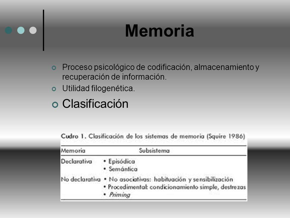 Memoria Proceso psicológico de codificación, almacenamiento y recuperación de información. Utilidad filogenética. Clasificación