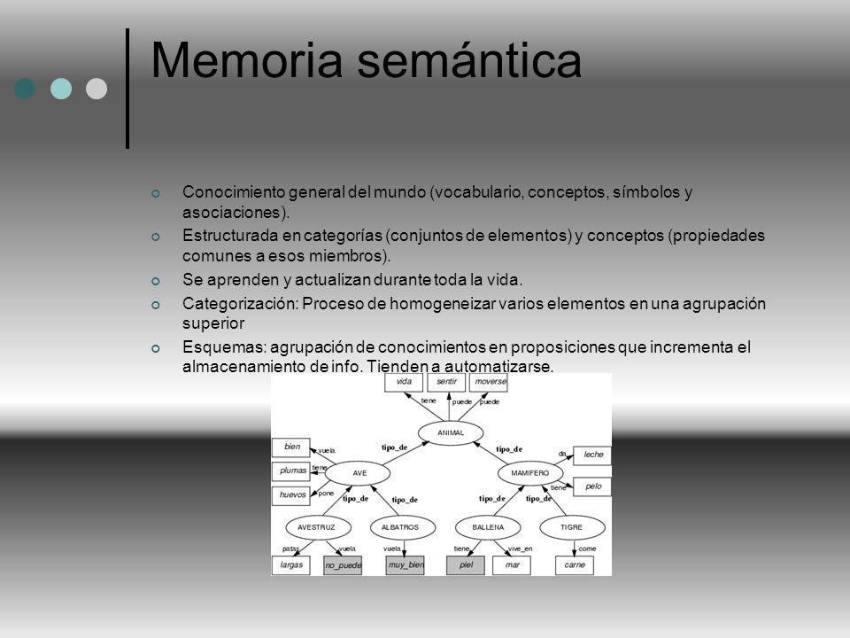 Memoria semántica Conocimiento general del mundo (vocabulario, conceptos, símbolos y asociaciones). Estructurada en categorías (conjuntos de elementos