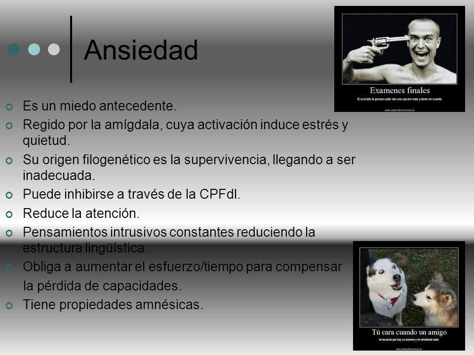 Ansiedad Es un miedo antecedente. Regido por la amígdala, cuya activación induce estrés y quietud. Su origen filogenético es la supervivencia, llegand
